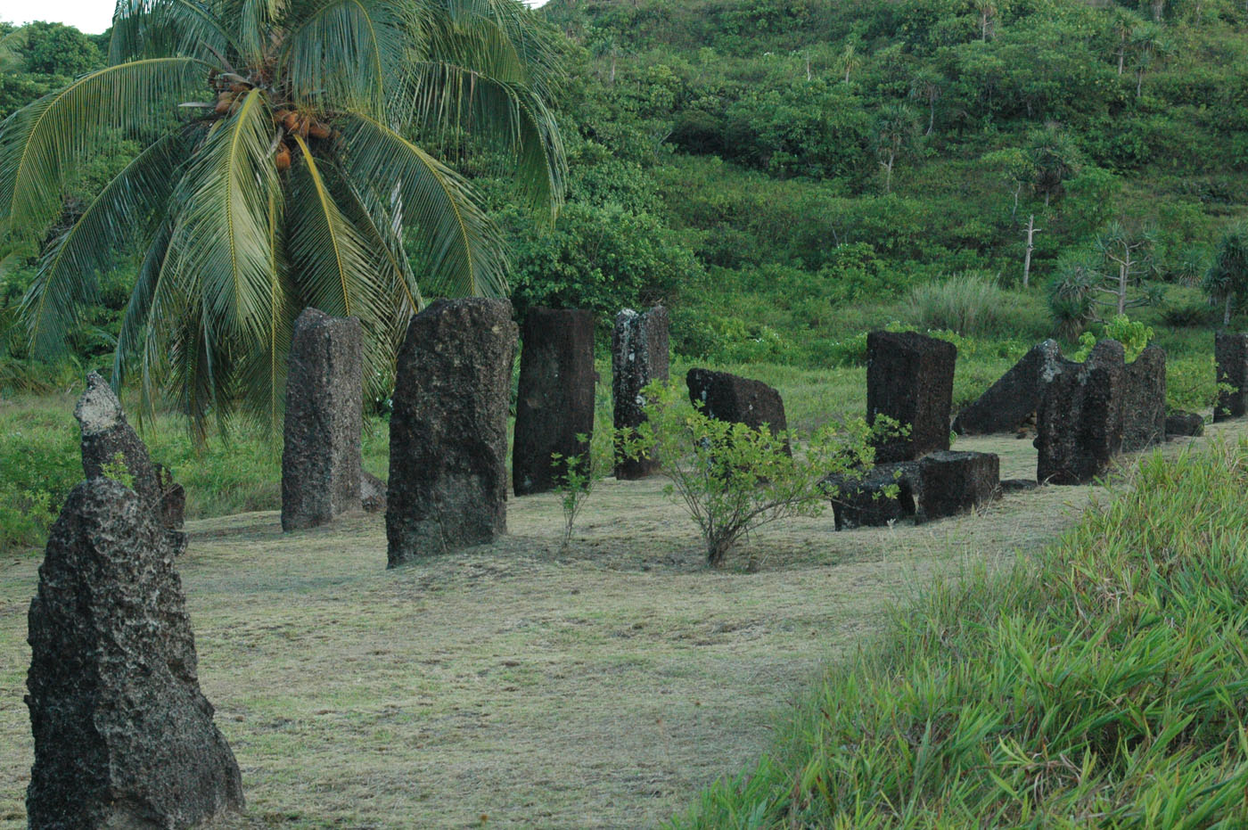 Palau Micronesia Petrogliphs