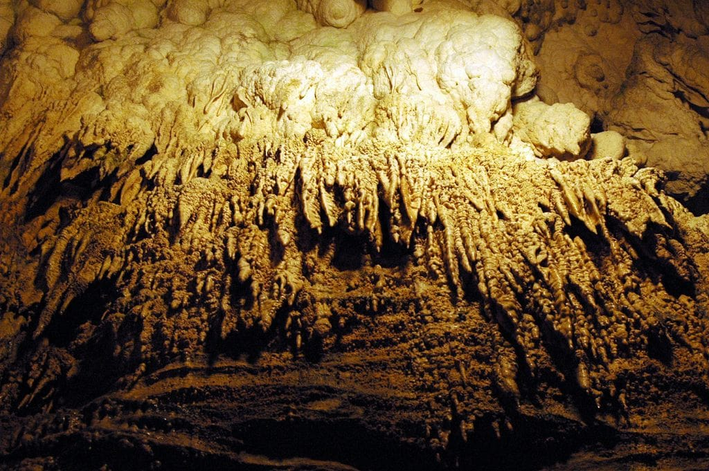 New Zealand Waitomo Caves