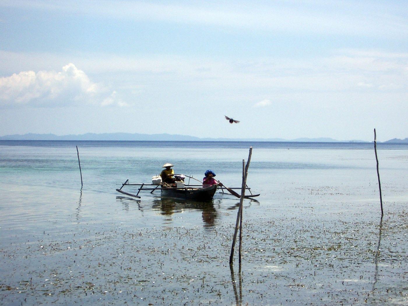 Indonesia Togians Walea