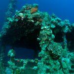 Sudan Underwater Umbria Wreck