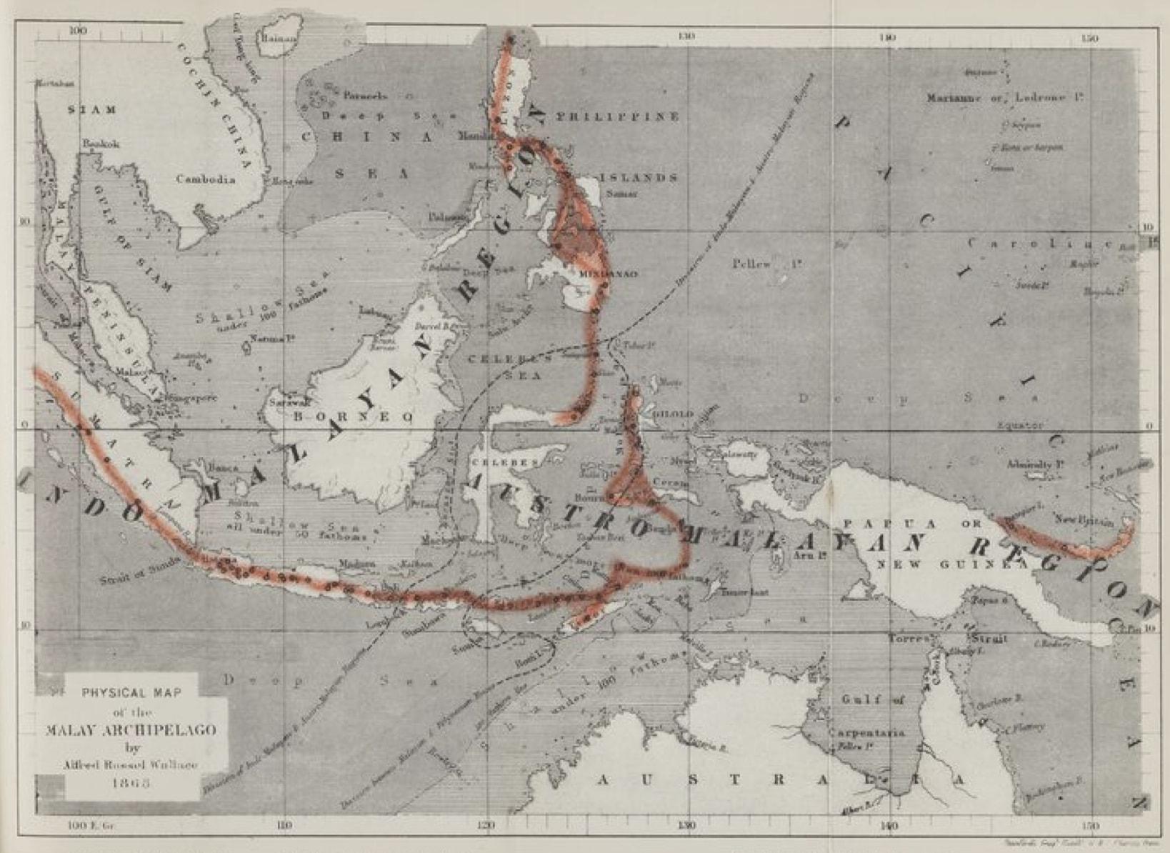map Wallacea